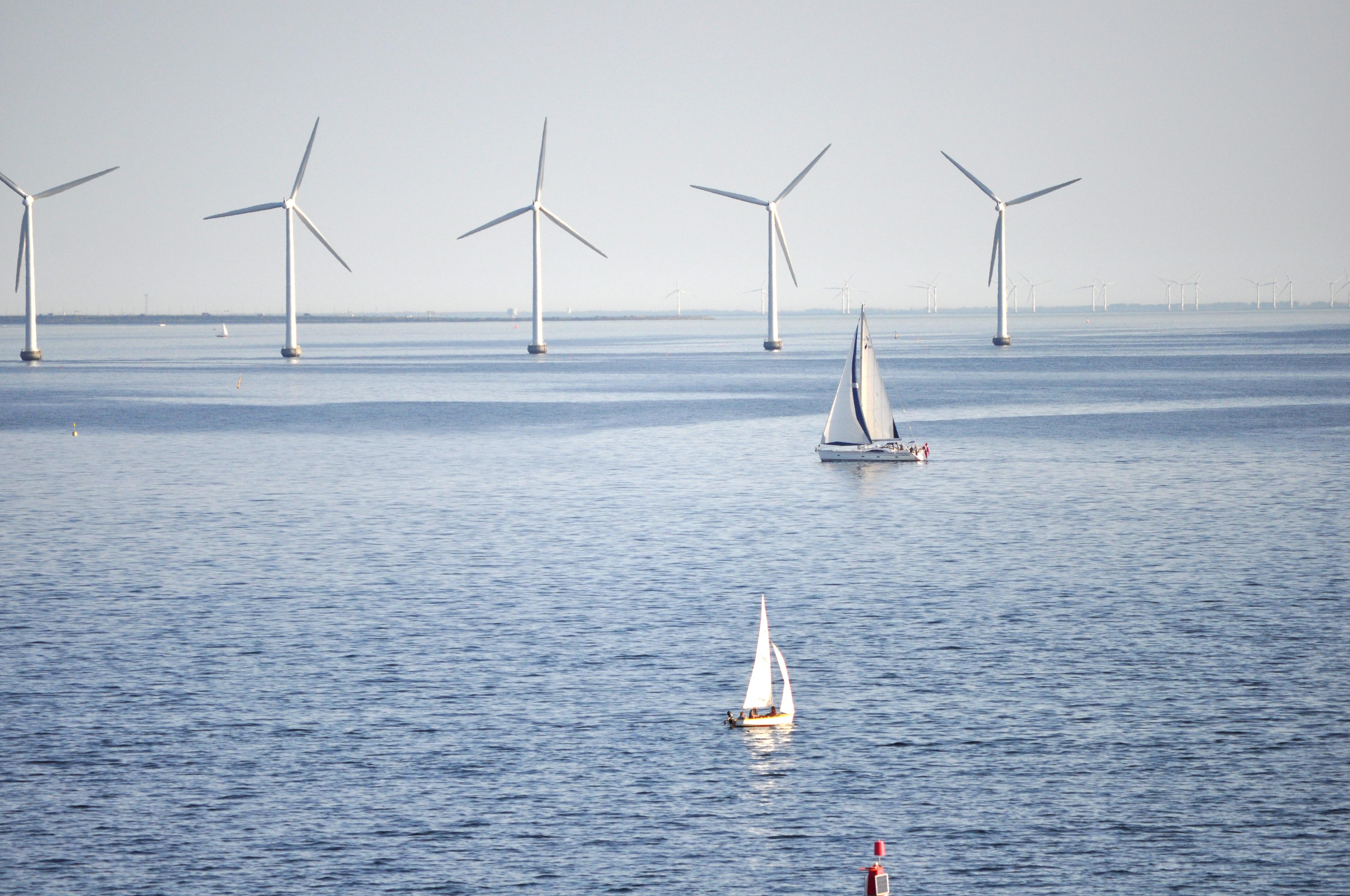 Eoliennes en mer, leur effet sur l'écosystème est étudié par Ecofunc - Bhart9070_Pixabay