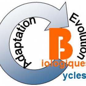 Logo ATM Cycles biologiques