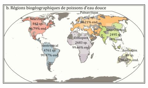 [Brève de science CNRS/INEE] Les provinces de poissons d'eau douce du globe définies pour la première fois