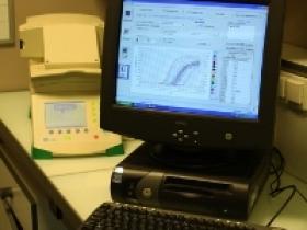 PCR quantitative