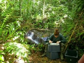 Diagnostic of the condition of aquatic populations: measuring individuals