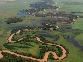Habitats aquatiques de l'Amazonie bolivienne