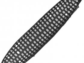 Diatomée bâteau - P.J. Lopez