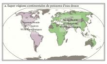 Cartes des (a) super-régions continentales et (b) et régions biogéographiques des poissons d'eau douce. Ces régions reflètent la distribution des différentes faunes d'espèces (sp.) de poissons d'eau douce sur la surface de la terre. Chacun région est comp