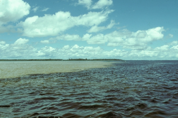 L'Amazone  © IRD/Bernard de Merona