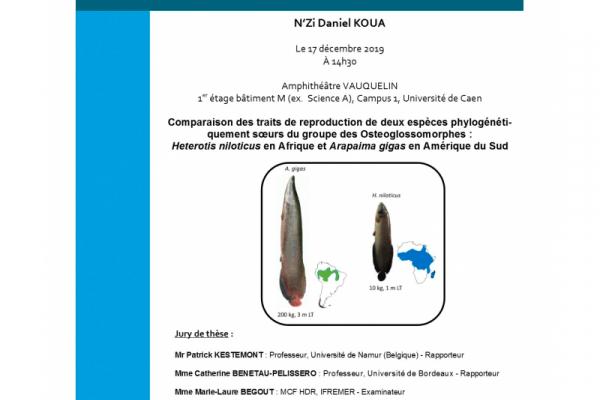 Avis-Soutenance-de-thèse-Daniel-KOUA-NZI