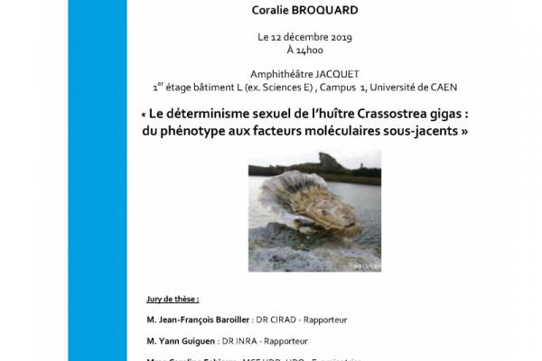BOREA-Avis-Soutenance-de-thèse-Coralie-BROQUARD-2