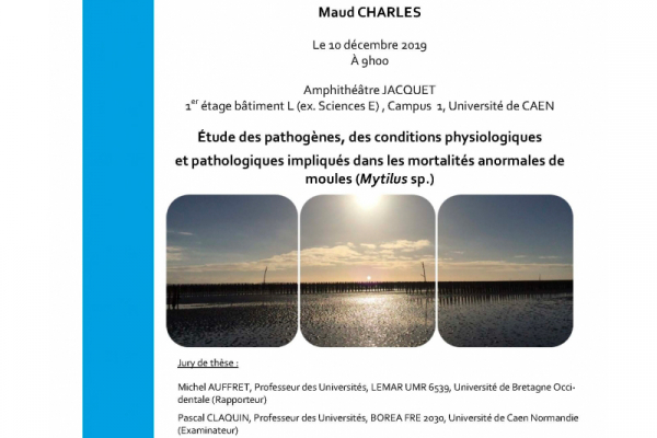 BOREA-Avis-Soutenance-de-thèse-Maud-CHARLES